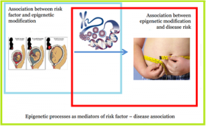 Illustration of epigenetic preceses as mediators of risk factors  Genetics Genetics Epigenetic processes as mediators of risk factors