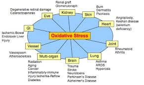 oxidative stress chart Oxidative stress in developmental brain disorders. Oxidative stress in developmental brain disorders. oxidative stress chart