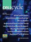 Cell Cycle {focus_keyword} Tempol is synthetically lethal with a BRCA1-deficiency in breast cancer cells Cell Cycle